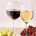 White Wine vs Red Wine – Understanding The Difference